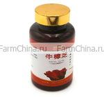Антродия (Красный камфорный гриб) - сильнейший иммуностимулятор и онкопротектор